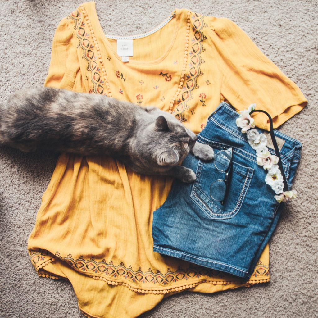 Image shows a outfit laid out with Bunty the cat sitting on the clothing.